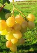 Sorte namiznega grozdja tolerantne za bolezni